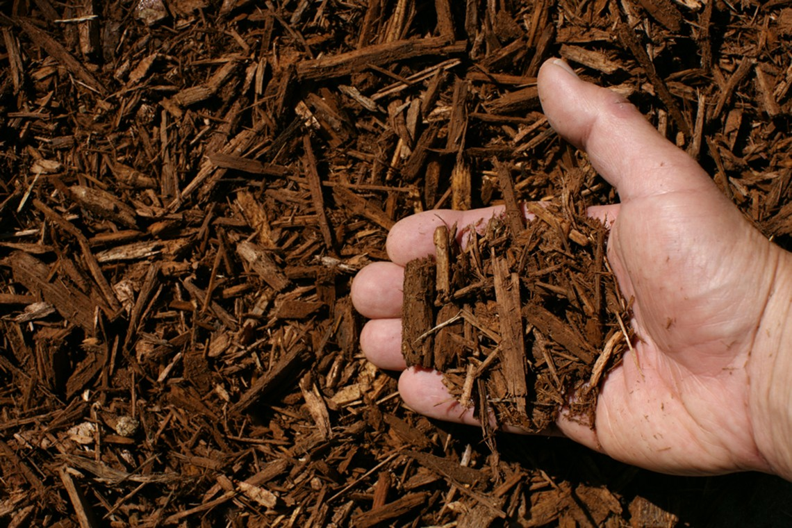 Which Kind Of Mulch Should You Use Melvin
