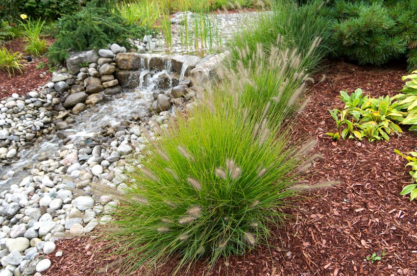 Bark Mulch Vs Stone Mulch Which To Use In Your Landscaping Project